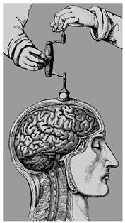Stop au bourrage de crâne : Le mode de vie végan n'est ni écologique, ni éthique !
