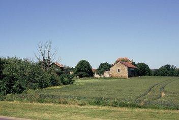 Plateau de Saclay (Photo JFD)