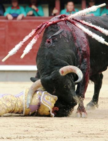 La corrida ne sera pas abolie. La torture en public d'un taureau est conforme à la constitution…