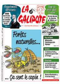 En Auvergne comme ailleurs, pour les forêts naturelles, ça sent le sapin.